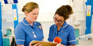 Calls to expand, develop and value the nursing workforce
